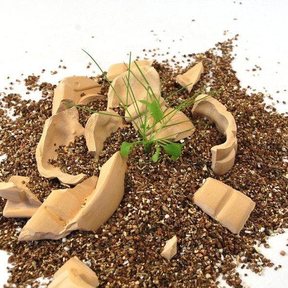 Throw and Grow – bloemengranaten