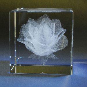 Bloeiende roos in glazen kubus met gravure