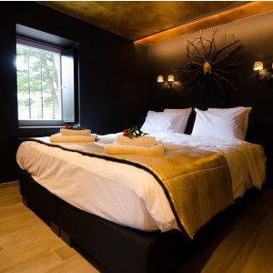 """Overnachting voor 2 in """"Sterren en Elegantie"""" suite - Spa"""