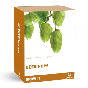 Plantenset ''Grow it'': hop voor bier